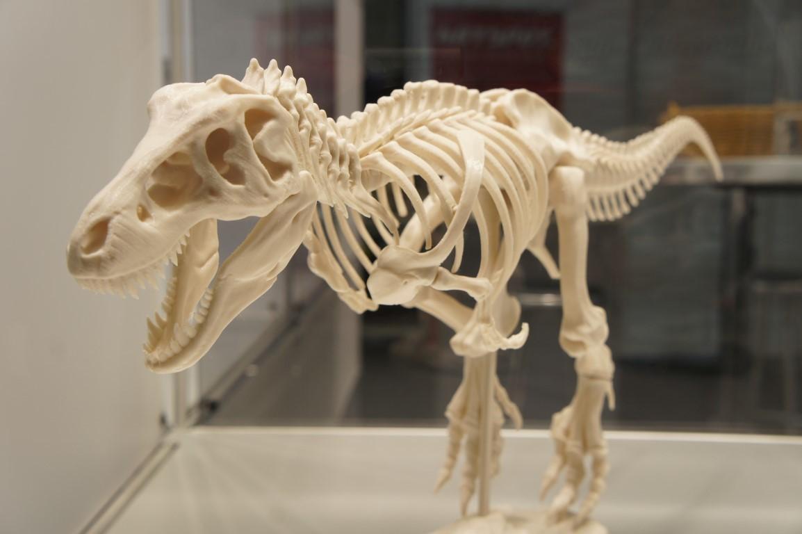 T Rex 3D Print